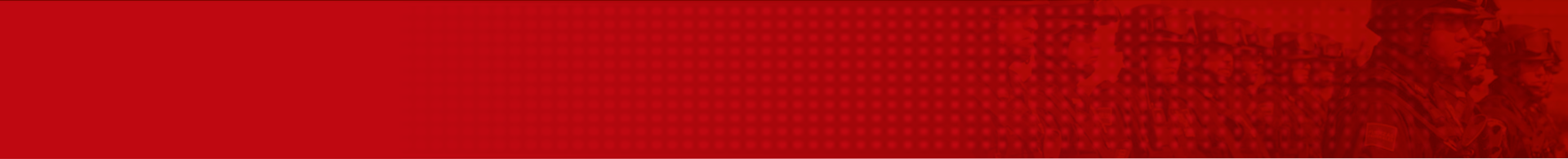 Banner de categoría