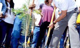 Inicia reforestación de la Sierra de San Miguelito a través del programa un Nuevo Bosque