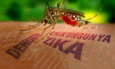 95 casos de dengue, 3 de chikungunya y uno de Zika en SL