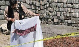Aprehenden en SLP a feminicida de Veracruz