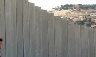Muro fronterizo afecta a más de 800 especies
