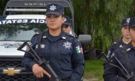 IP: seguridad, tema pendiente en San Luis Potosí