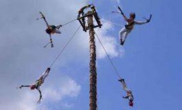 Consulta para declarar a Voladores de Tamaletón Patrimonio Cultural