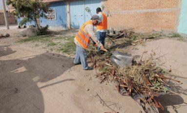 Servicios municipales lleva acabo diferentes trabajos de conservación de espacios