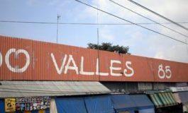 Aparecen víboras en Mercado Valles 85
