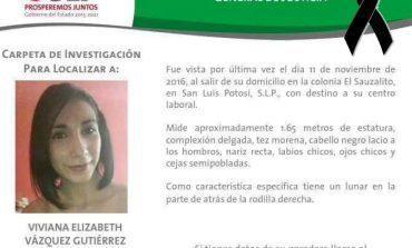 Feminicidio contra Viviana, consecuencia de no atender recomendaciones: ONG