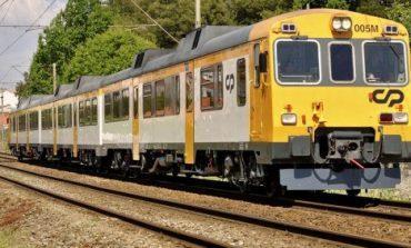 Tren arrolla a jornalero
