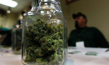 Aseguran 5 kilos de marihuana en el Aeropuerto