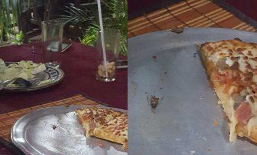 Encuentran cucaracha en una pizza en restaurante
