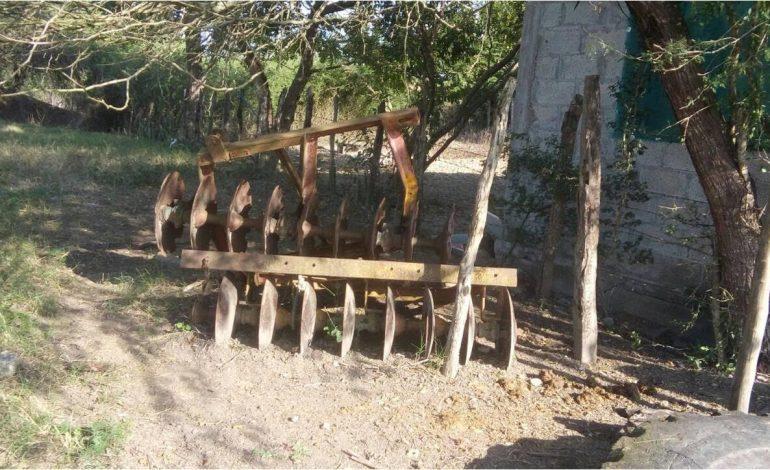 Aseguran semoviente e implemento agrícola robados en Ébano
