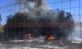 Incendio generó alarma en colonia Pavón