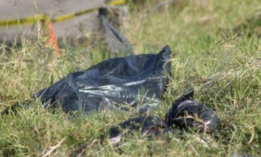 Encuentran cuerpos mutilados en bolsas de basura Monterrey
