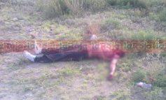 Murió apuñalado por la espalda; luego su cuerpo fue destrozado por la fauna