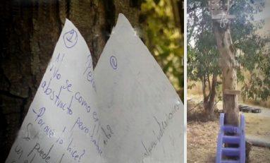 Adolescente de 16 años se suicida en un parque el día de su cumpleaños