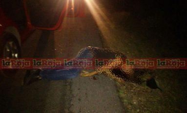 Identifican como policía de Ojuelos a uno de los cuerpos localizados este martes