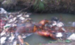 Localizan cadáver en descomposición en aguas negras