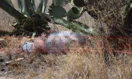 El sábado una cámara grabó su secuestro; hoy apareció ejecutado