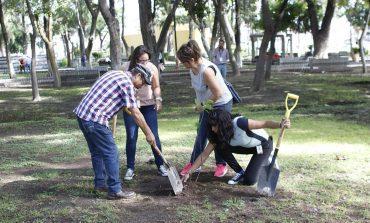 Ayuntamiento tiene como meta llegar a las 200 mil plantaciones este año.