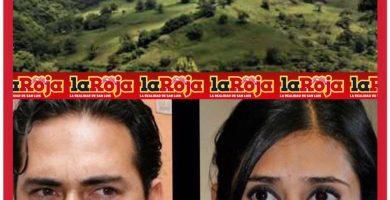 Segam y Partido Verde se lavan las manos ante ecocidio en Xilitla