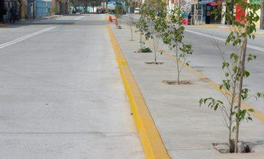 Continúa la mejora de infraestructura en Soledad