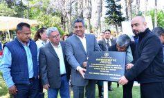 """Descendiente de """"La Noche Triste"""" fue plantado en la Alameda Juan Sarabia (Fotos)"""