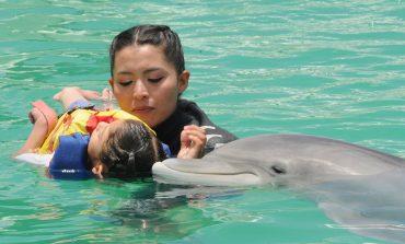 20 menores potosinos reciben delfinoterapia en Guanajuato
