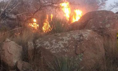Más de 70 brigadistas colaboran en el combate a incendios en La Pila