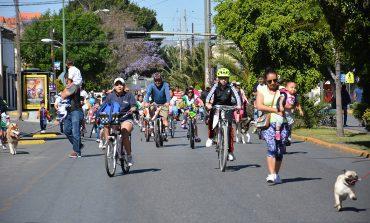 Por Festival de la Cantera, suspenden ciclovía dominical de este próximo 22 de abril