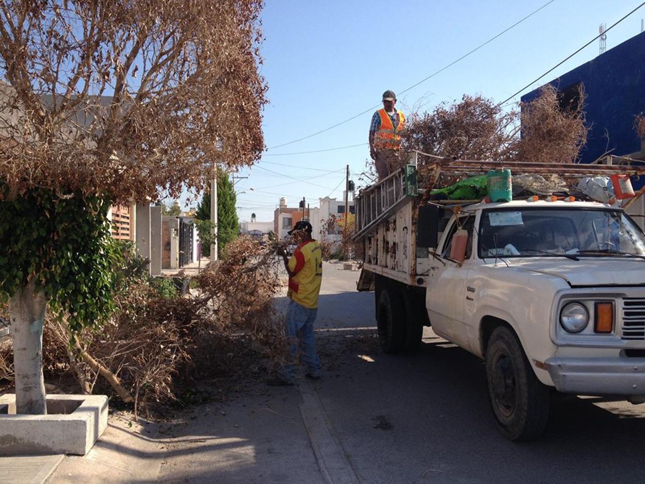 Continúa el mantenimiento diario de infraestructura urbana en Soledad