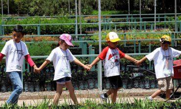 Más de 80 niños formaron parte del campamento de verano del DIF de Soledad