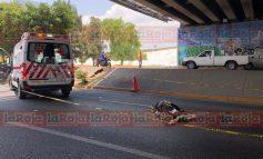 Hombre muere arrollado en SNM