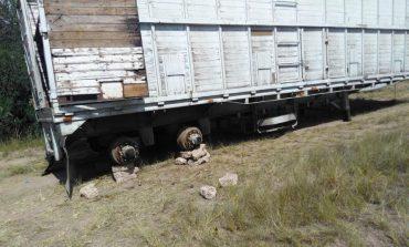 Localizan desvalijado remolque de trailer robado con huevos