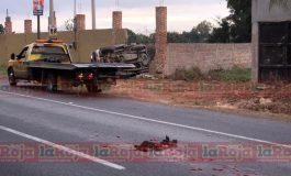 Vuelcan en camioneta robada y matan a can que atravesaba por Carretera a Rioverde