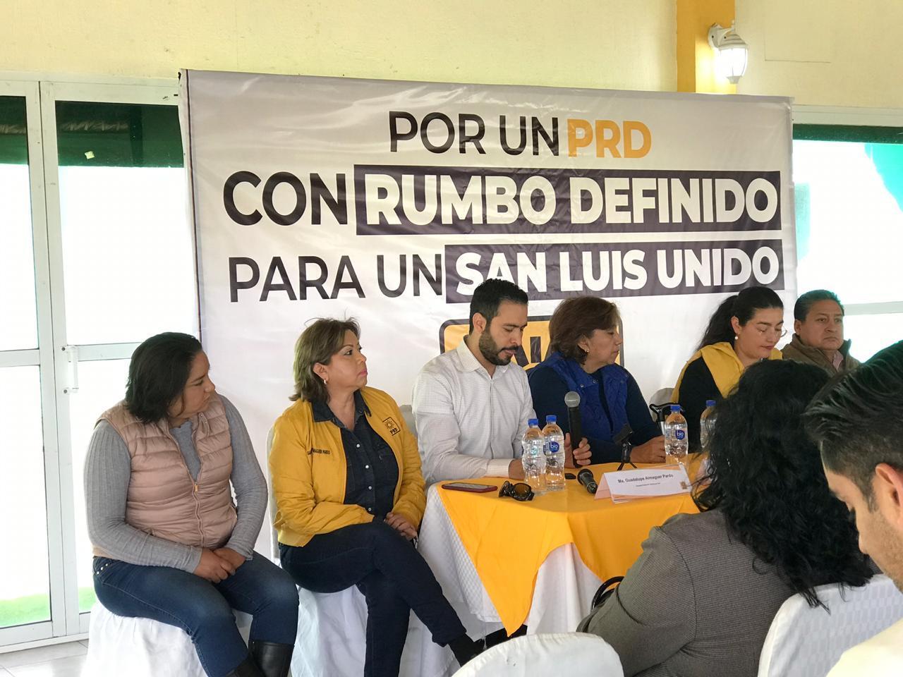 SLP, bastión en la renovación nacional del PRD: delegada Julieta Camacho