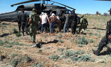 SEDENA confirma 11 detenidos tras balacera en las inmediaciones de Jalostotitlán y San Juan de Los Lagos