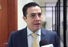 Alianza entre PVEM y Morena, clave en las últimas elecciones: Ramos Hernández