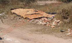 Denuncian la operación insalubre de un negocio de venta de mariscos en la Colonia Pedroza