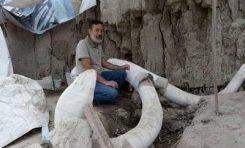 Revelan trampa para mamuts en Tultepec