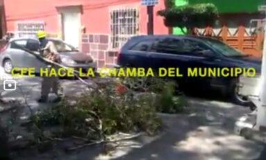 SIN SERVICIOS MUNICIPALES LA COLONIA JULIAN CARRILLO